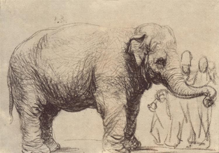 Rembrandt. An elephant. 1637.
