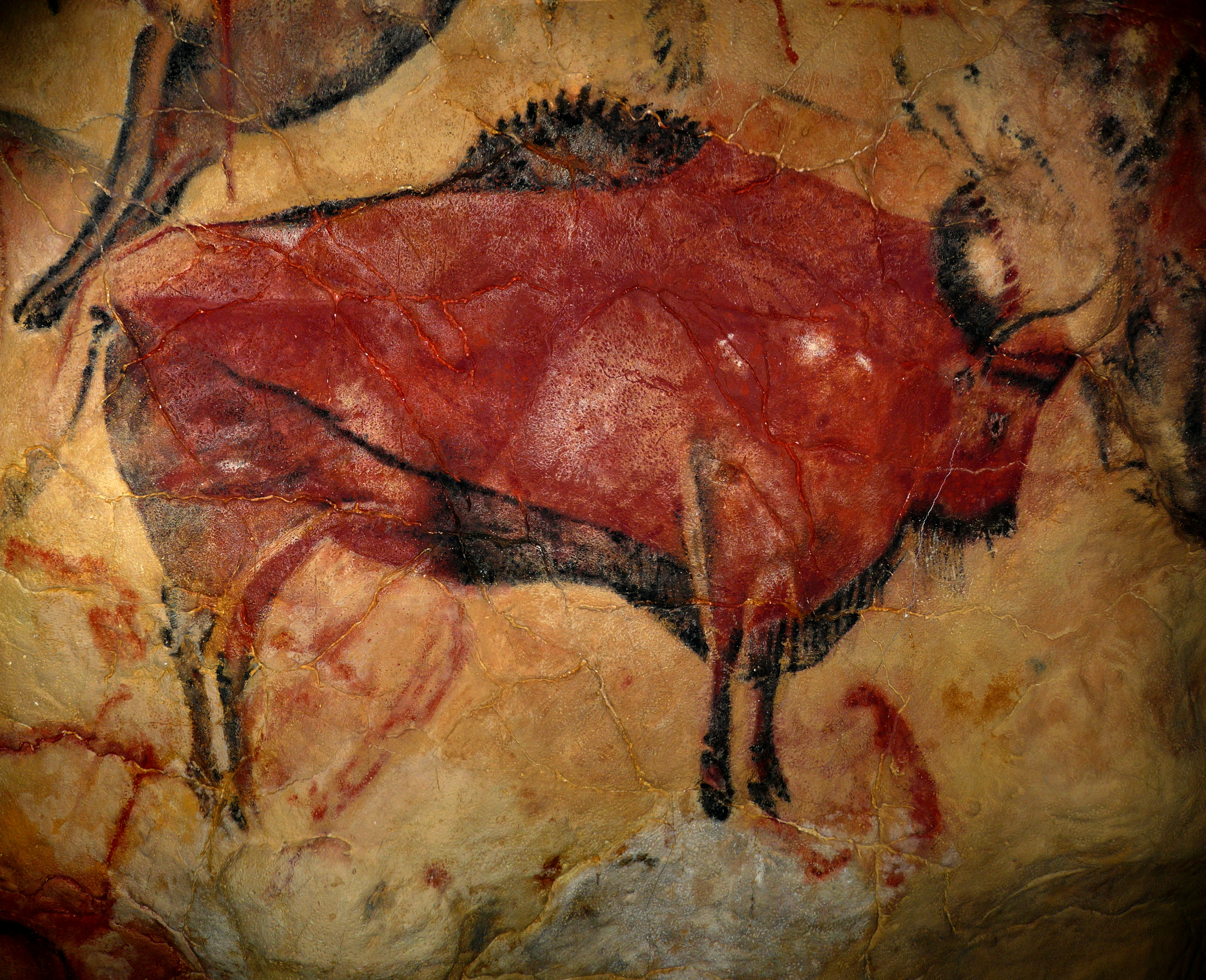 Bison of Altamira cave. Ca. 35000 A.D.